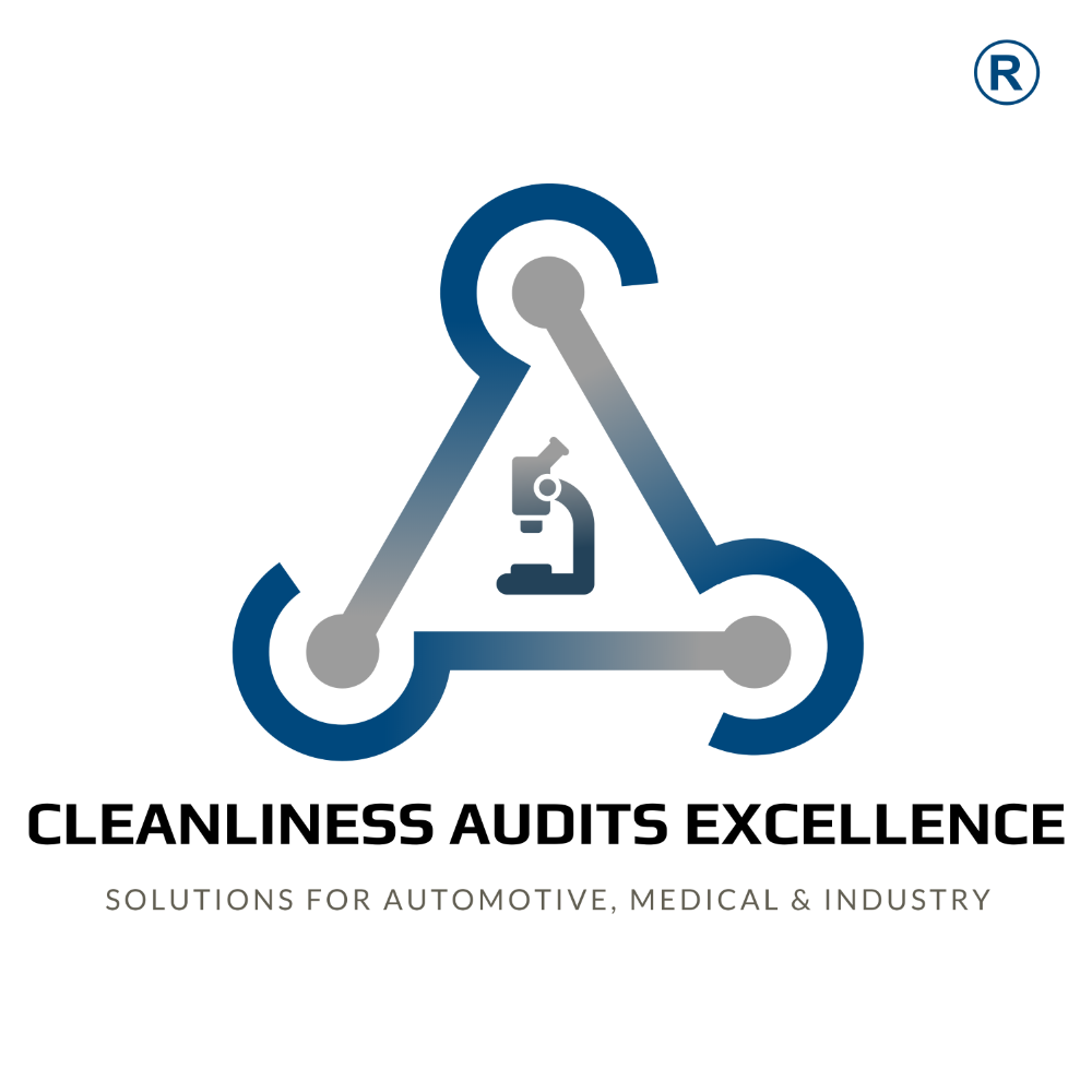 Cleanliness Audits Excellence